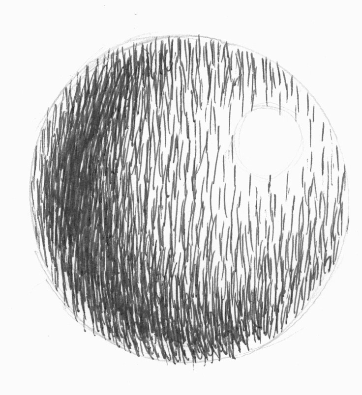 Line Drawing Vs Value Drawing : Dynamic drawing archive hatching by hannah allgeier